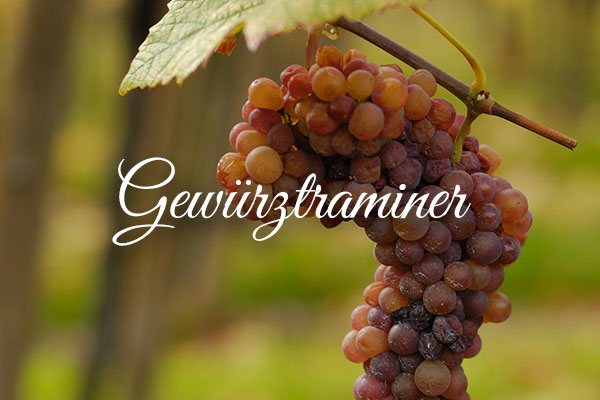 Variedades de uva clara: Gewürztraminer