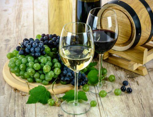 Datos curiosos sobre la historia del vino en México
